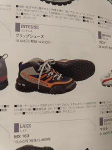 INTENSE-Five ten shoes
